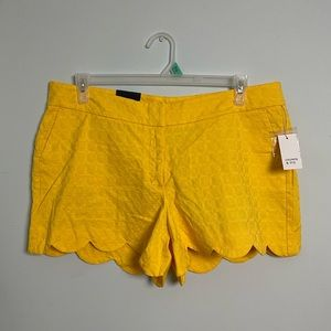 Crown & Ivy Scalloped Shorts. Size 14